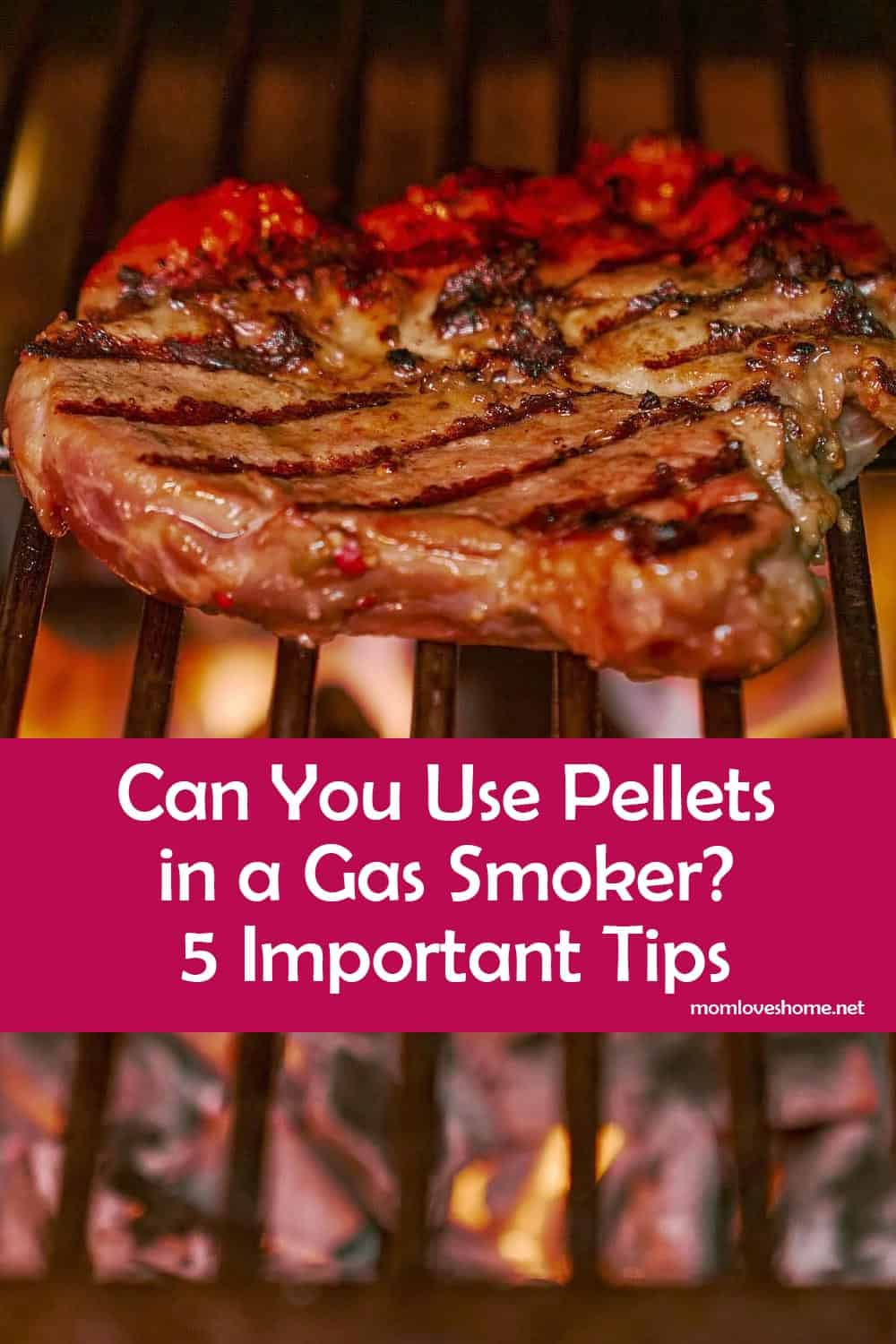 Can You Use Pellets in a Gas Smoker
